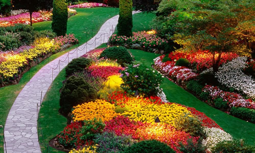 Landscape design chicago il arbor tree care for Landscape design chicago